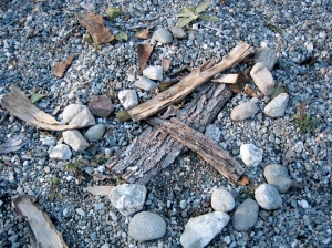 Bark and Stones