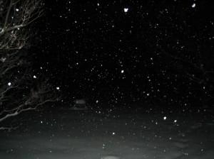 Snowing Like Stink at Night