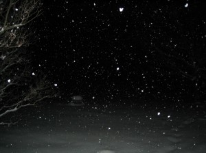 Snowing Like Stink at Night