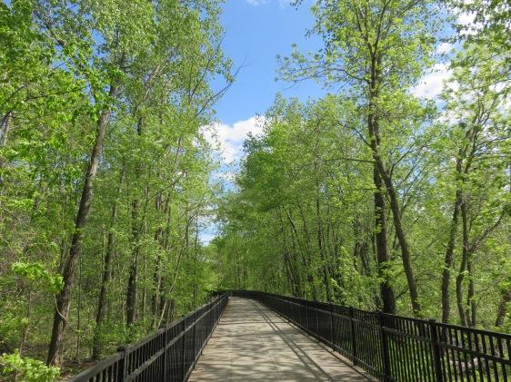 Bike Path, Burlington